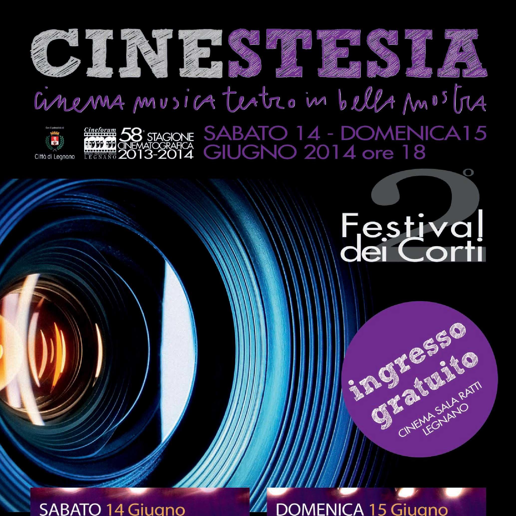 Locandina_70x100_Cinestesia2014_bassa-page-001_sq